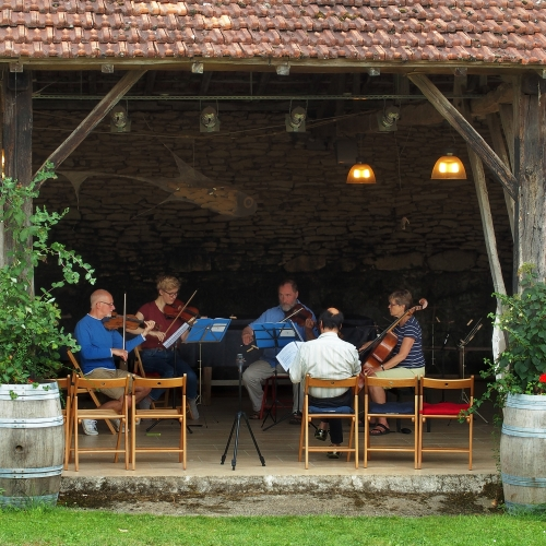 Advanced String Chamber Music, Cubertou, Jul 2015